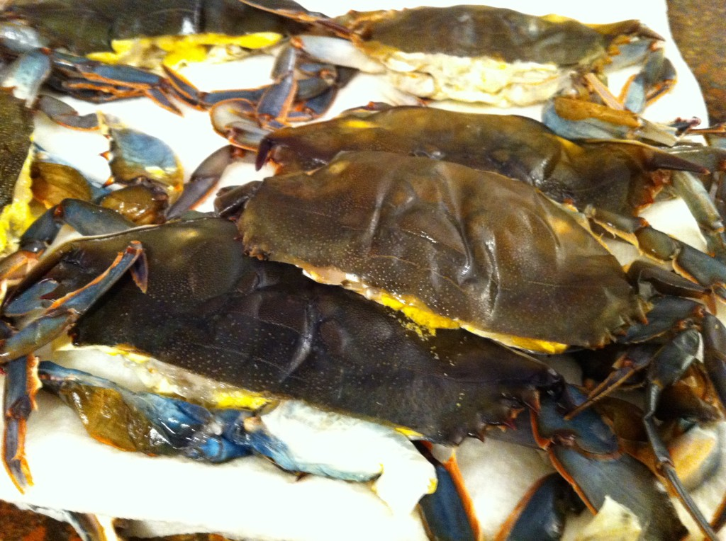 prepared soft shell crabs